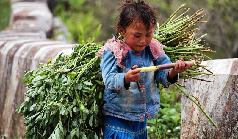young-child-working-in-field.jpg